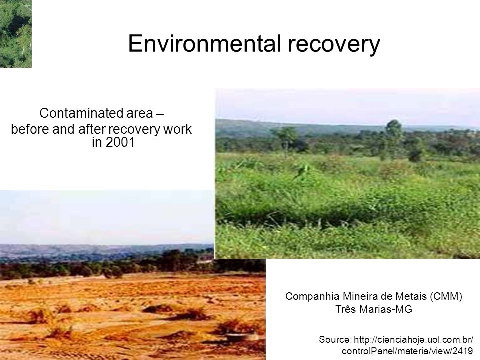 Environmental recovery Contaminated area – before and after recovery work in 2001 Companhia Mineira de Metais (CMM) Três Marias-MG Source: http://cien
