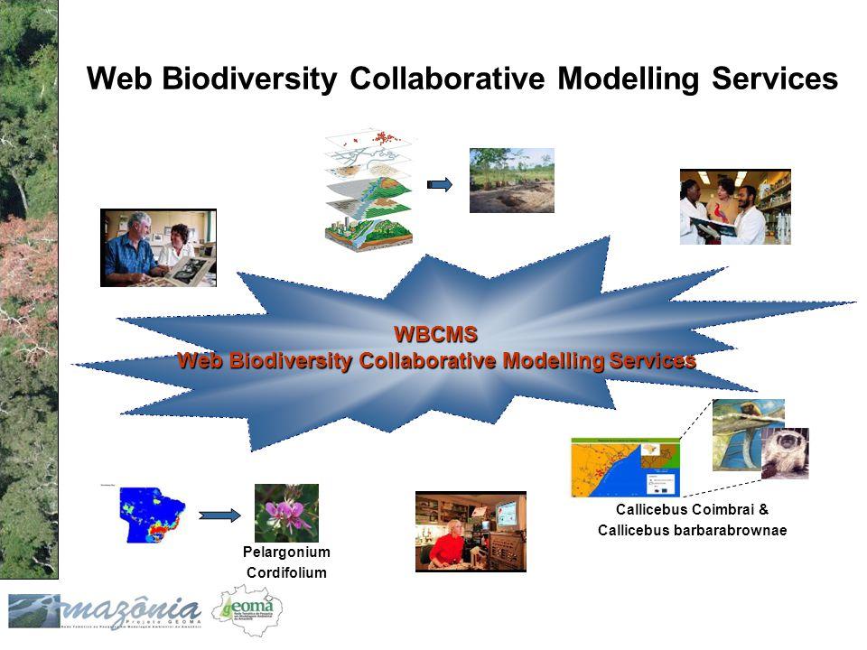 Web Biodiversity Collaborative Modelling Services Pelargonium Cordifolium Callicebus Coimbrai & Callicebus barbarabrownae WBCMS Web Biodiversity Colla