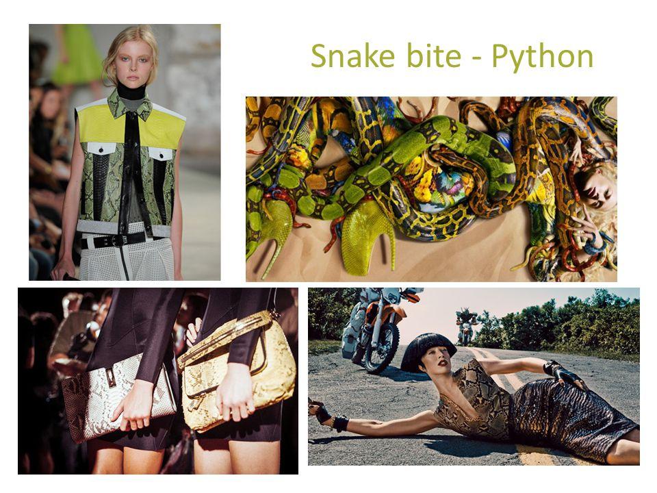 Snake bite - Python