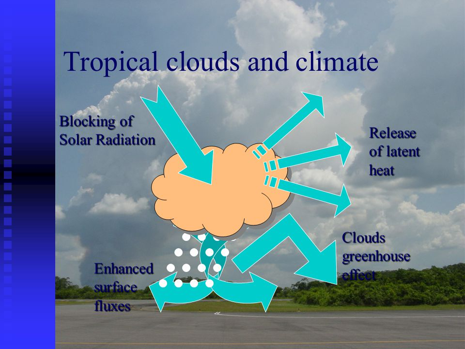 Enhanced surface fluxes Tropical clouds and climate Clouds greenhouse effect Blocking of Solar Radiation Release of latent heat