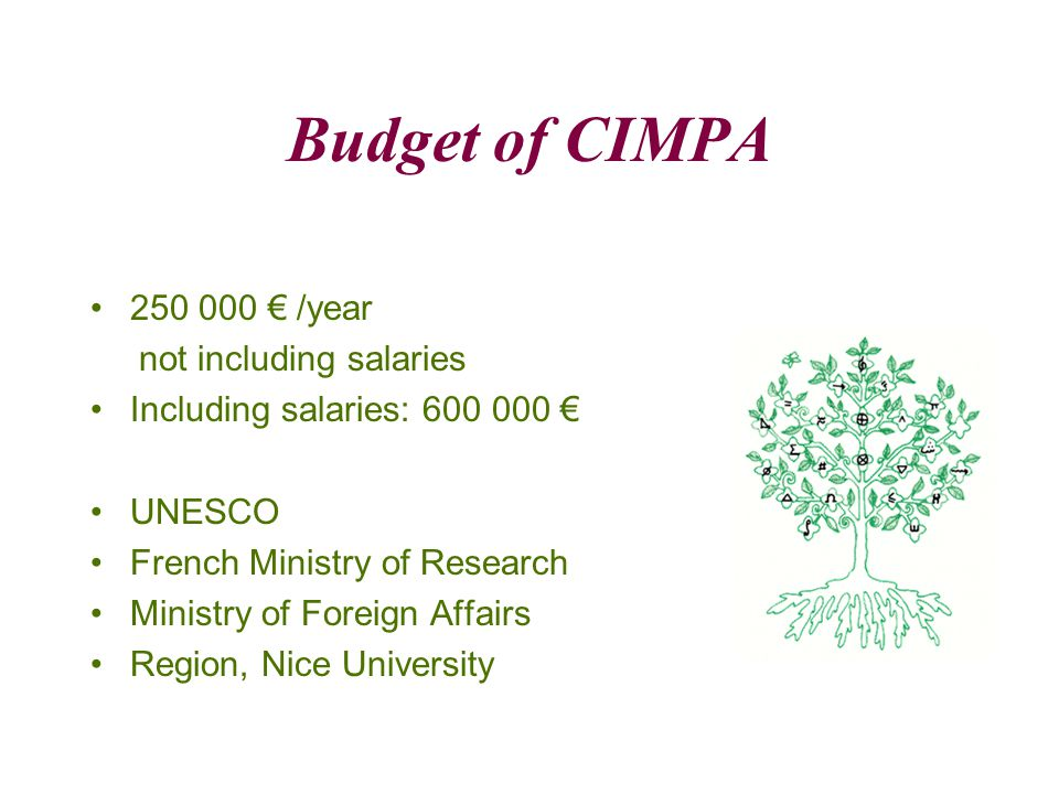 Budget of CIMPA 250 000 € /year not including salaries Including salaries: 600 000 € UNESCO French Ministry of Research Ministry of Foreign Affairs Region, Nice University