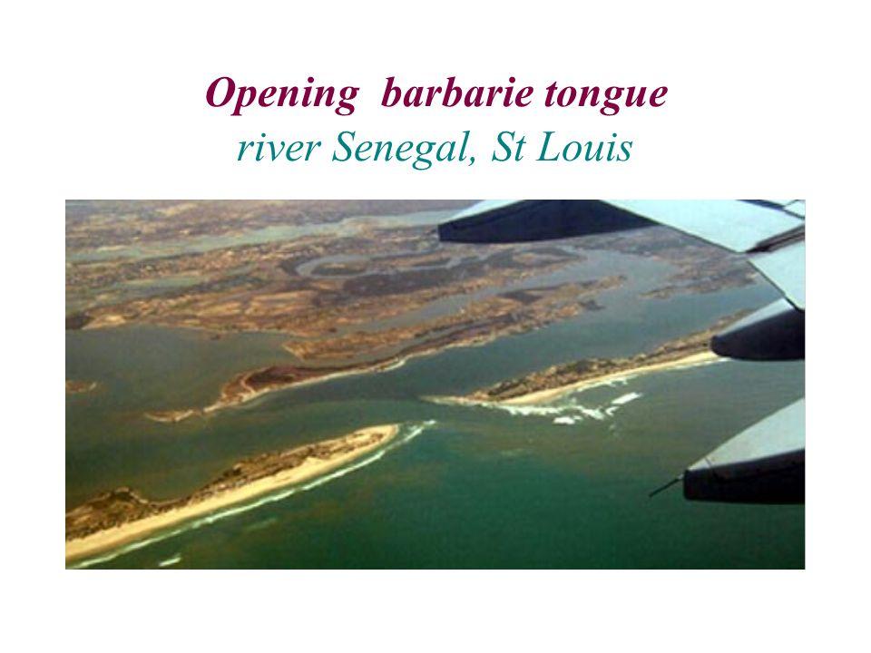 Opening barbarie tongue river Senegal, St Louis