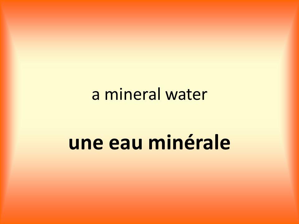 a mineral water une eau minérale
