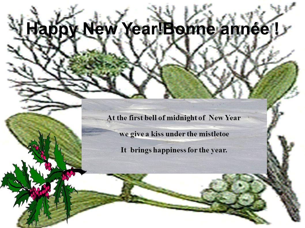 Happy New Year!Bonne année .