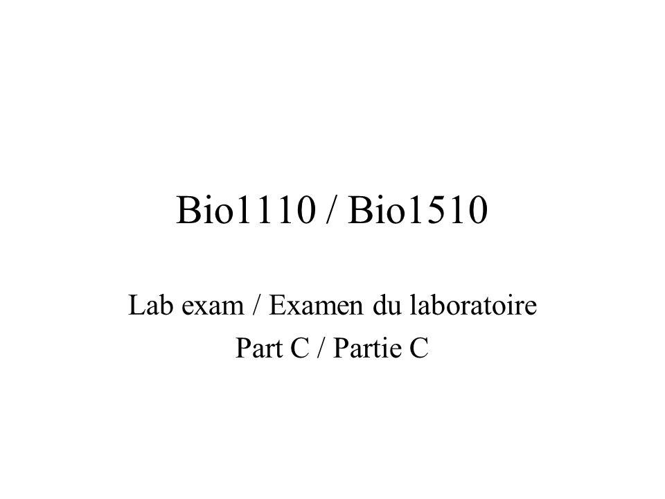 Bio1110 / Bio1510 Lab exam / Examen du laboratoire Part C / Partie C