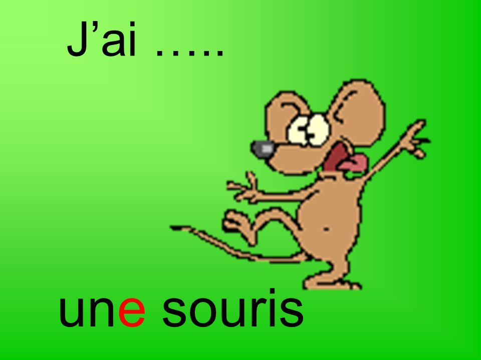 J'ai ….. une souris