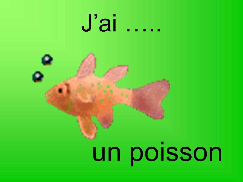 J'ai ….. un poisson