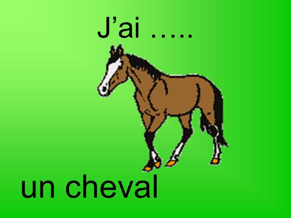 J'ai ….. un cheval