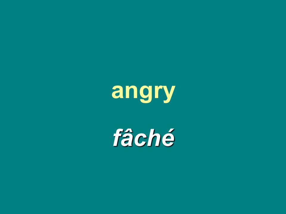 angry fâché