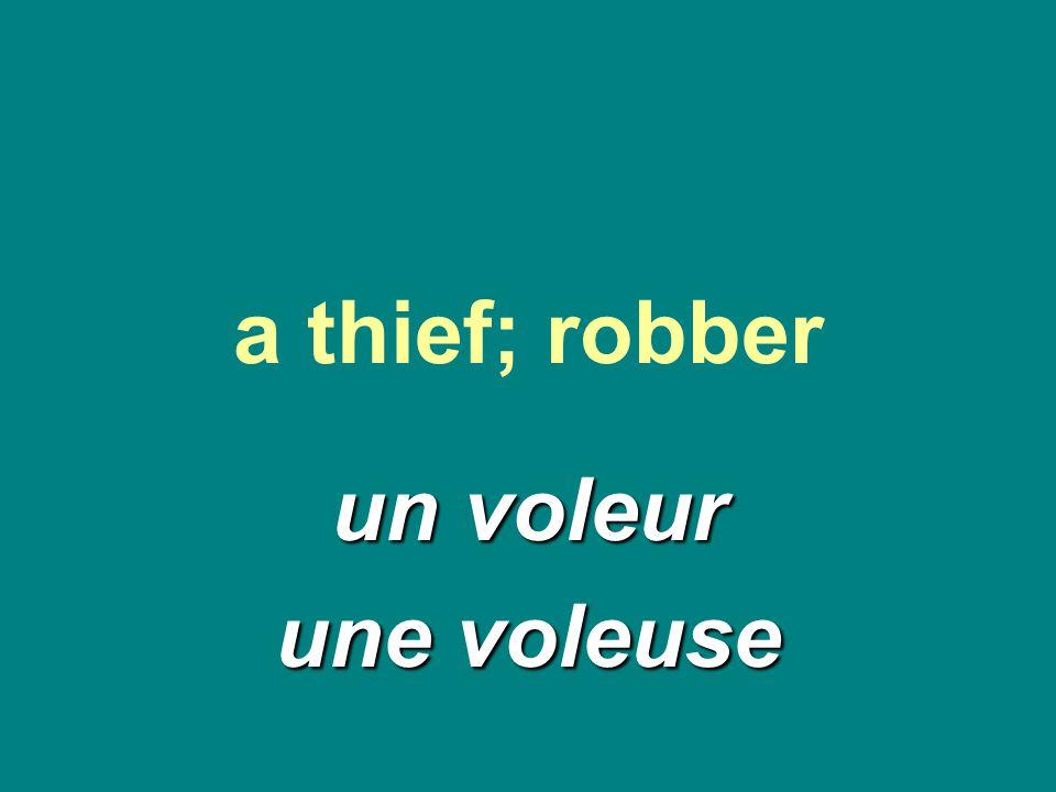 a thief; robber un voleur une voleuse