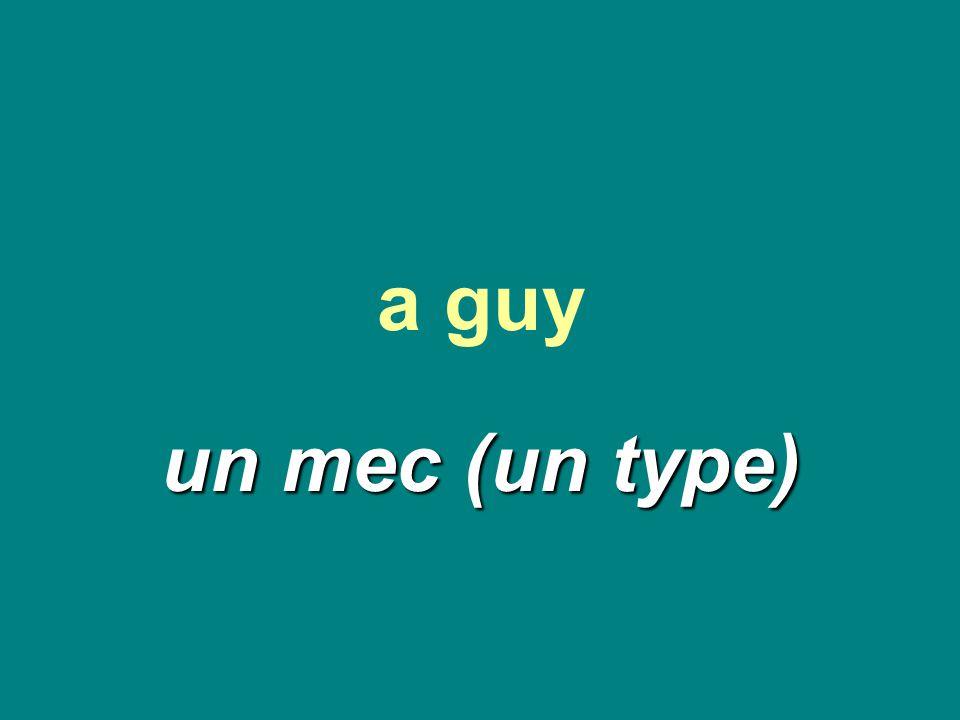 a guy un mec (un type)