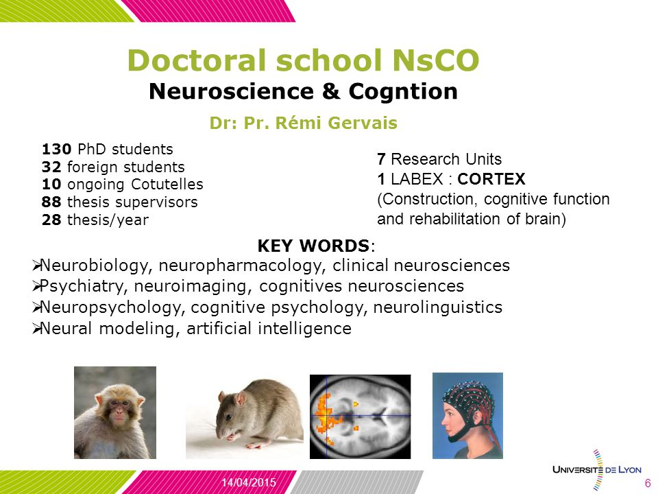 Doctoral school NsCO Neuroscience & Cogntion Dr: Pr.