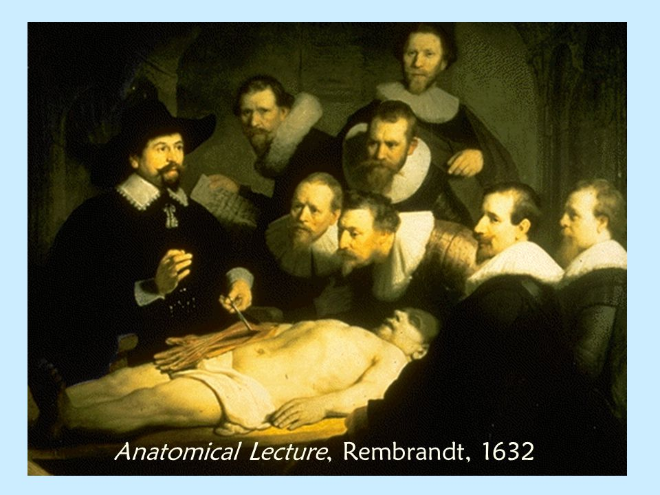 Anatomical Lecture, Rembrandt, 1632