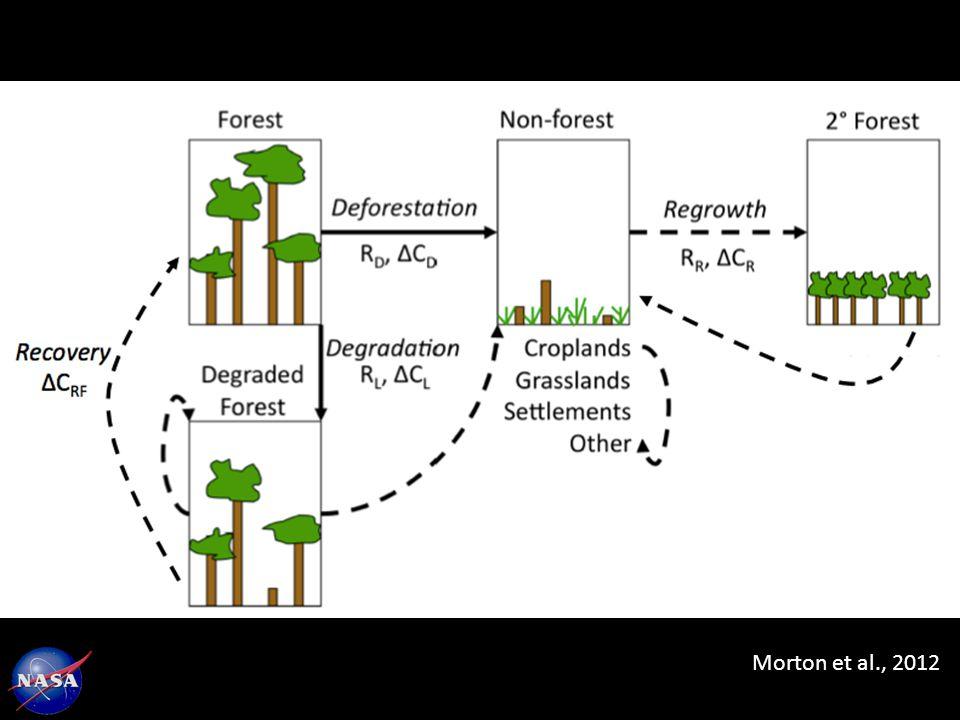 Morton et al., 2012