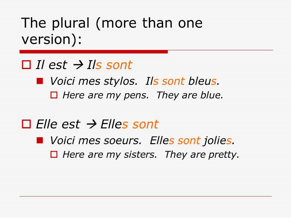 The plural (more than one version):  Il est  Ils sont Voici mes stylos. Ils sont bleus.  Here are my pens. They are blue.  Elle est  Elles sont V