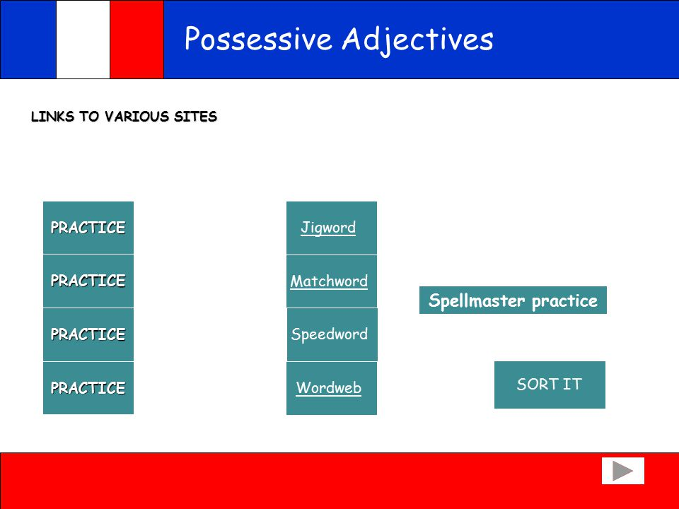 Possessive Adjectives CORRECTION