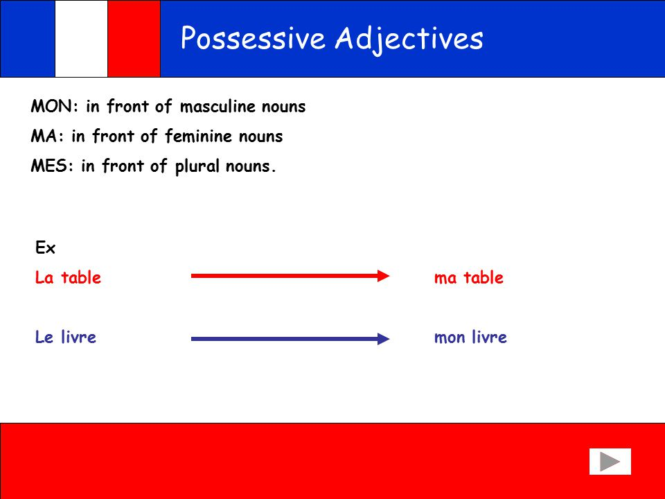 Possessive Adjectives The words for my, your, his/her, in French are slightly more complicated than in English because of the genders.
