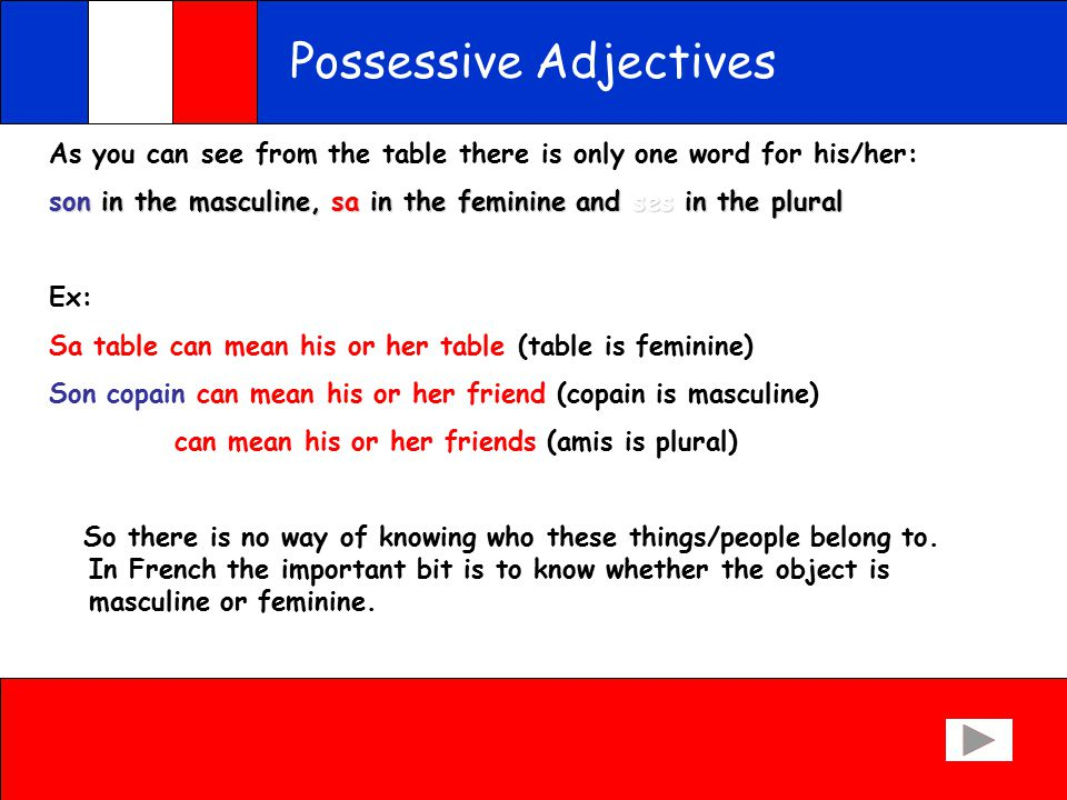 Possessive Adjectives But you have to say: your and his or her as well : here is how it goes: Masculine nounsFeminine nounsPlural nouns MYmonmames YOURtontates HIS/HERsonsases