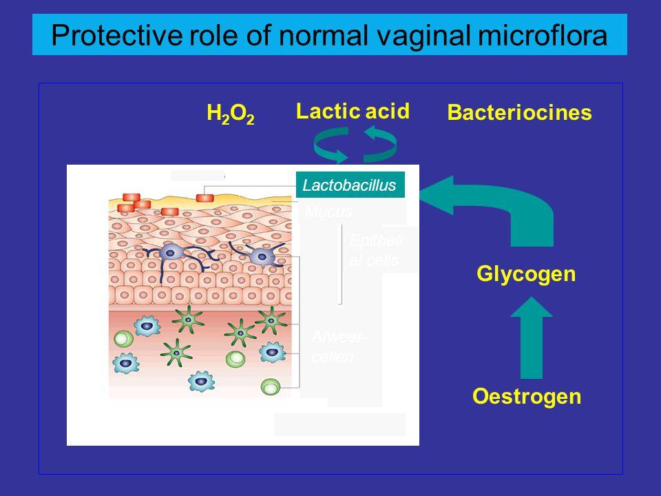 Protective role of normal vaginal microflora Oestrogen Glycogen Lactic acid H2O2H2O2 Bacteriocines Lactobacillus Mucus Epitheli al cells Afweer- celle