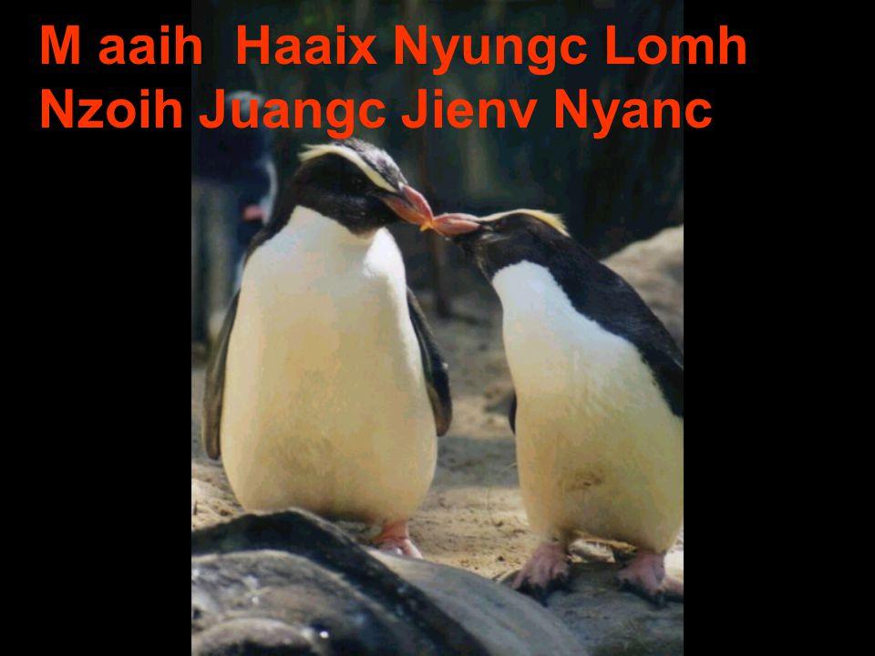 M aaih Haaix Nyungc Lomh Nzoih Juangc Jienv Nyanc