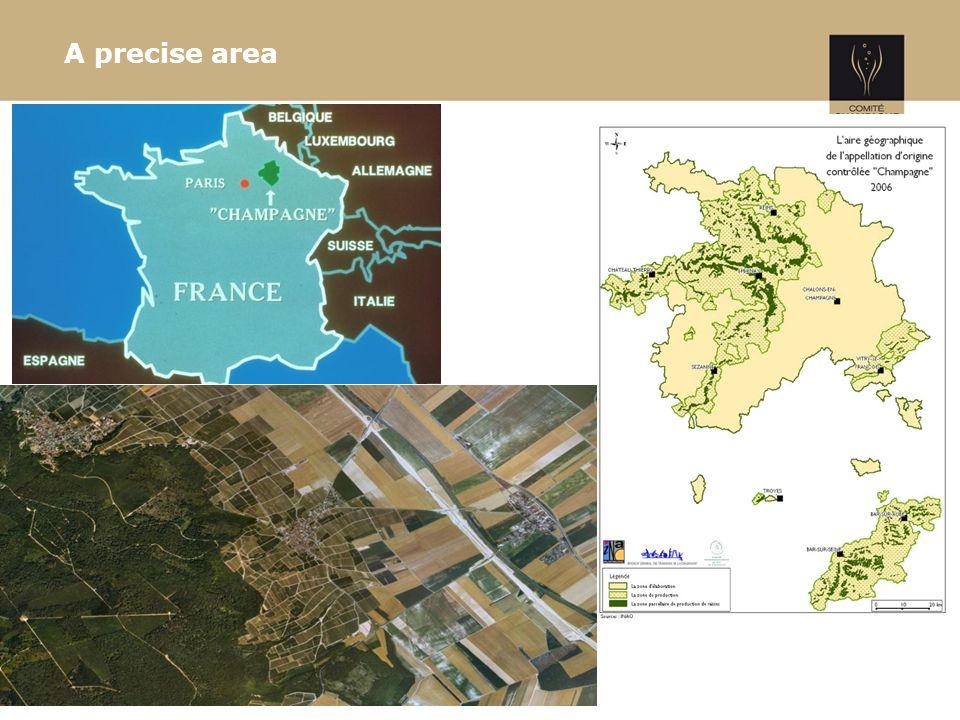 A precise area 3
