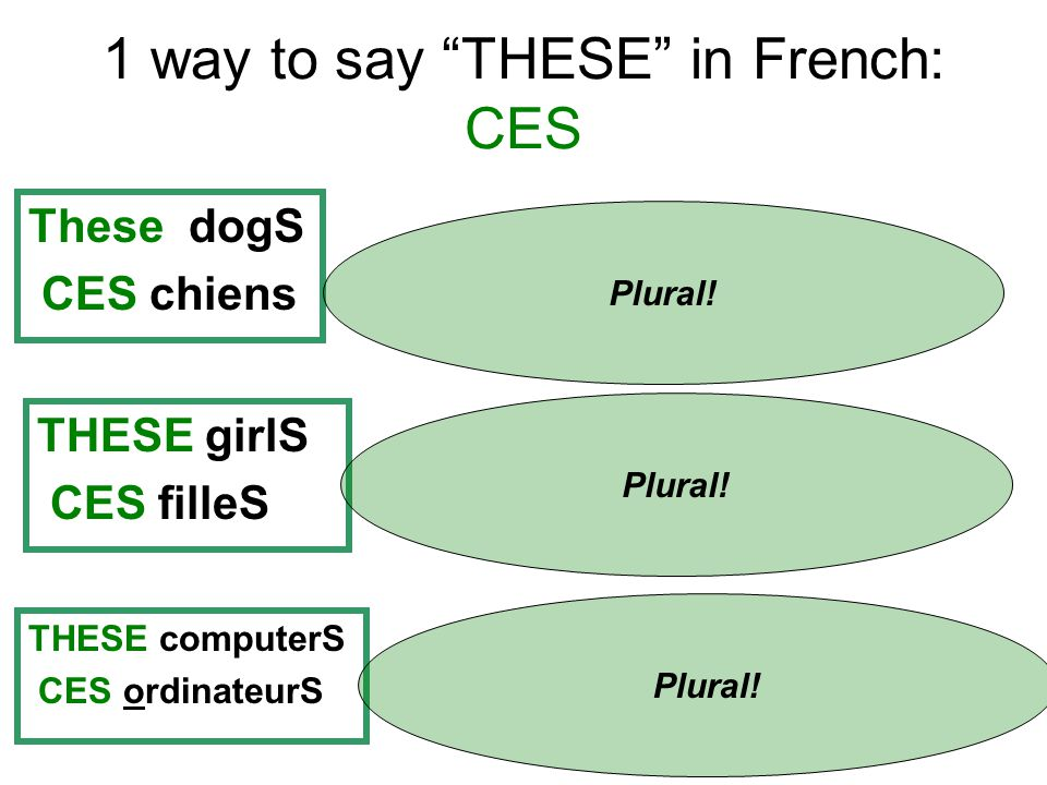 1 way to say THESE in French: CES These dogS CES chiens Plural.