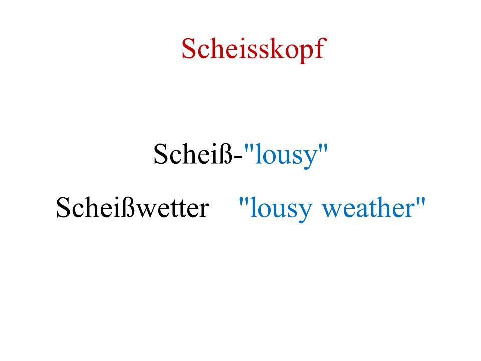 Scheisskopf Scheiß-