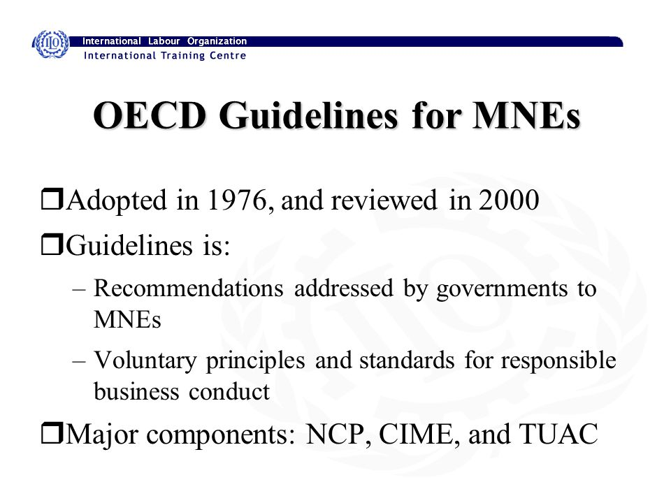 OECD Guidelines for MNEs rAdopted in 1976, and reviewed in 2000 rGuidelines is: –Recommendations addressed by governments to MNEs –Voluntary principles and standards for responsible business conduct rMajor components: NCP, CIME, and TUAC