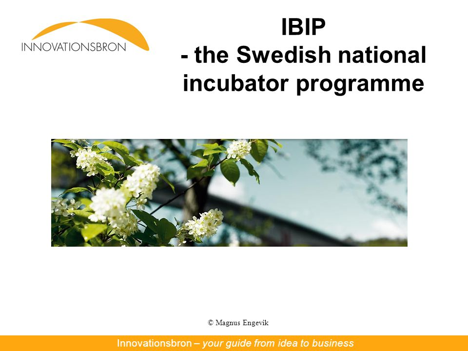 © Magnus Engevik IBIP - the Swedish national incubator programme Innovationsbron – Nya affärer ur forskning och innovationInnovationsbron – your guide from idea to business