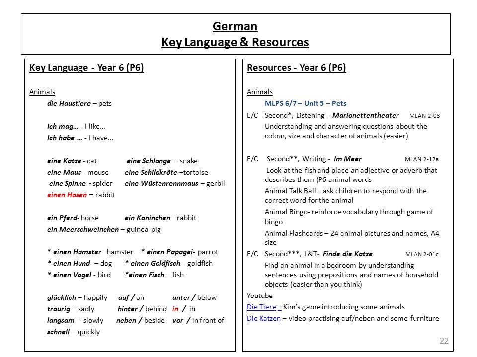 22 German Key Language & Resources Key Language - Year 6 (P6) Animals die Haustiere – pets Ich mag… - I like… Ich habe … - I have...