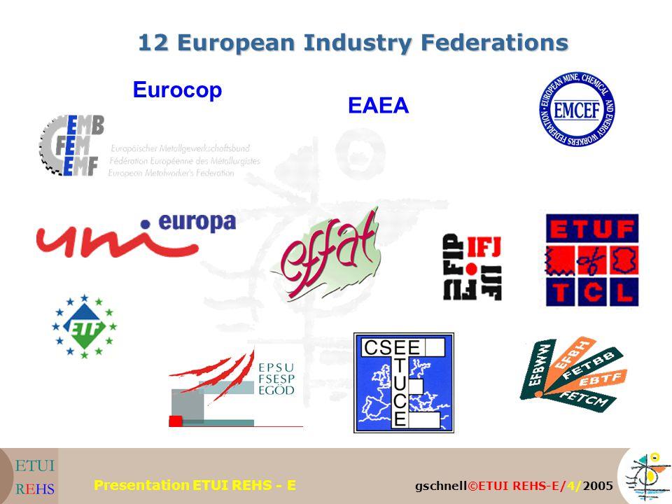 gschnell©ETUI REHS-E/4/2005 Presentation ETUI REHS - E 12 European Industry Federations Eurocop EAEA