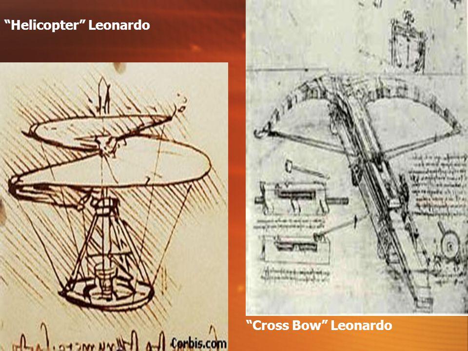 Embryo Leonardo Human Anatomy Leonardo