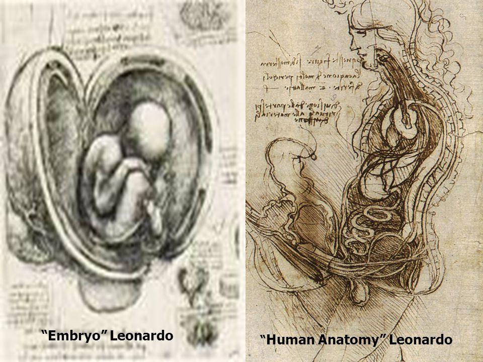 The Birth of Venus Botticelli Uffizi Gallery, Florence, Italy
