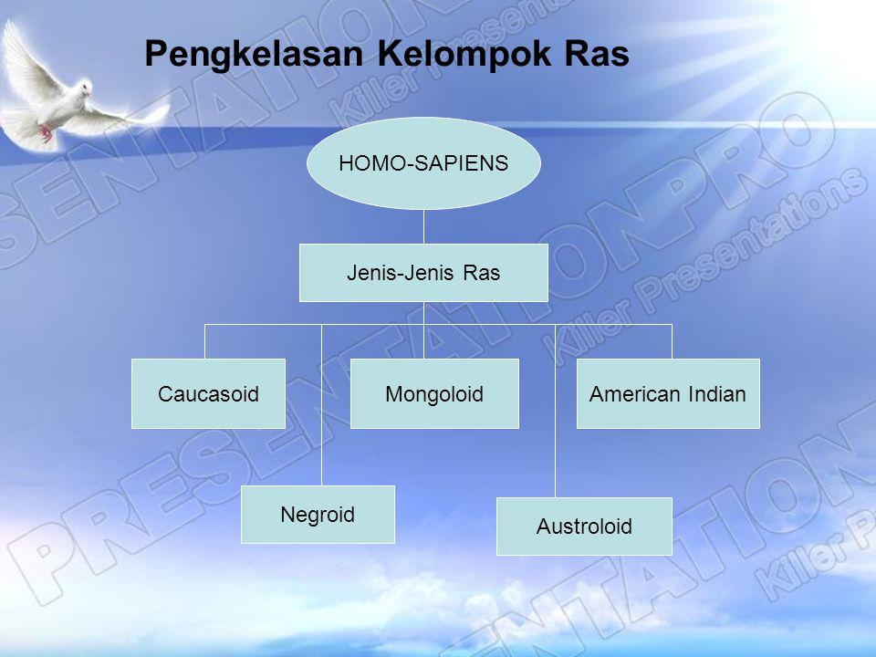 Pengkelasan Kelompok Ras HOMO-SAPIENS Jenis-Jenis Ras CaucasoidMongoloidAmerican Indian Negroid Austroloid