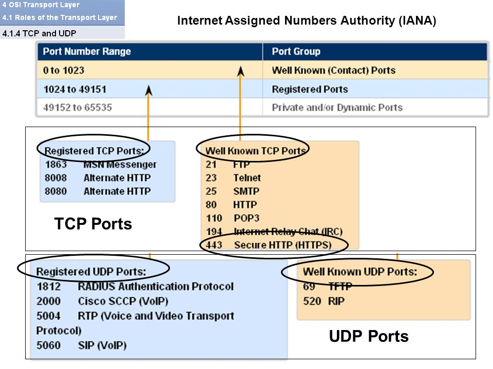 TCP Ports UDP Ports Internet Assigned Numbers Authority (IANA)
