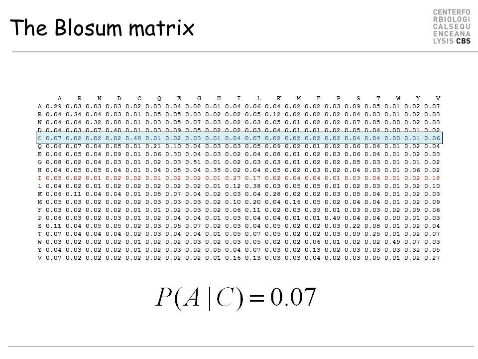 A R N D C Q E G H I L K M F P S T W Y V A 0.29 0.03 0.03 0.03 0.02 0.03 0.04 0.08 0.01 0.04 0.06 0.04 0.02 0.02 0.03 0.09 0.05 0.01 0.02 0.07 R 0.04 0