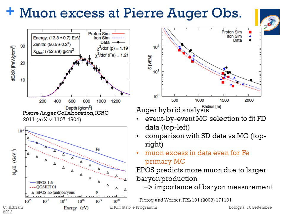 + Muon excess at Pierre Auger Obs.