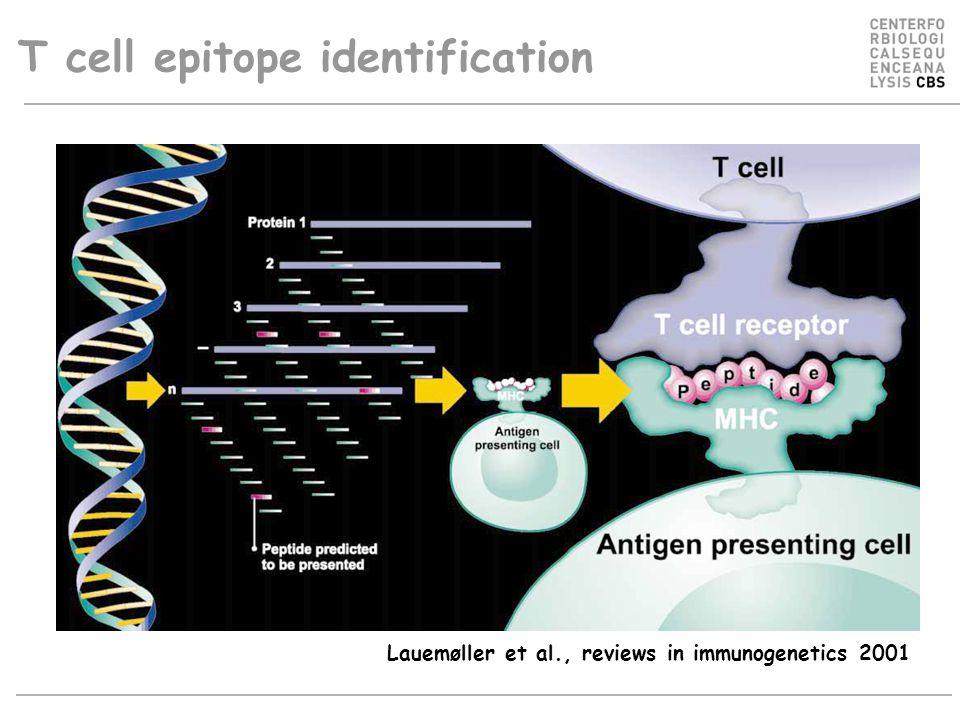 T cell epitope identification Lauemøller et al., reviews in immunogenetics 2001