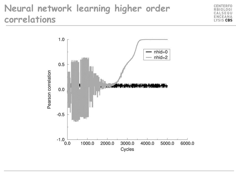 Neural network learning higher order correlations
