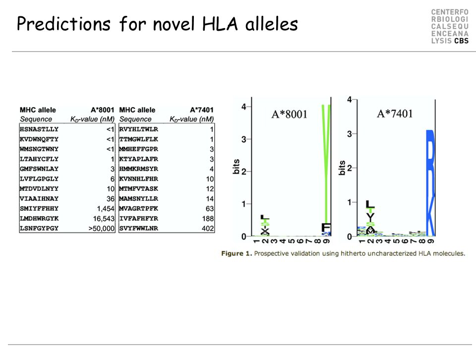 Predictions for novel HLA alleles