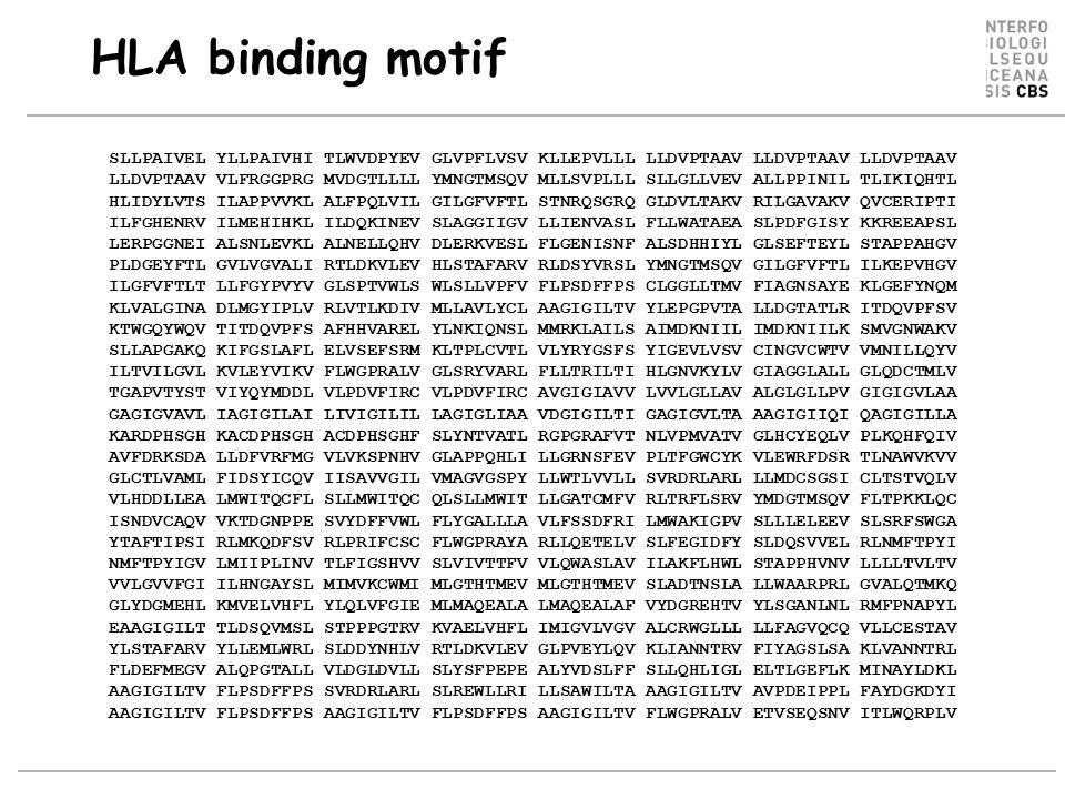 HLA binding motif SLLPAIVEL YLLPAIVHI TLWVDPYEV GLVPFLVSV KLLEPVLLL LLDVPTAAV LLDVPTAAV LLDVPTAAV LLDVPTAAV VLFRGGPRG MVDGTLLLL YMNGTMSQV MLLSVPLLL SLLGLLVEV ALLPPINIL TLIKIQHTL HLIDYLVTS ILAPPVVKL ALFPQLVIL GILGFVFTL STNRQSGRQ GLDVLTAKV RILGAVAKV QVCERIPTI ILFGHENRV ILMEHIHKL ILDQKINEV SLAGGIIGV LLIENVASL FLLWATAEA SLPDFGISY KKREEAPSL LERPGGNEI ALSNLEVKL ALNELLQHV DLERKVESL FLGENISNF ALSDHHIYL GLSEFTEYL STAPPAHGV PLDGEYFTL GVLVGVALI RTLDKVLEV HLSTAFARV RLDSYVRSL YMNGTMSQV GILGFVFTL ILKEPVHGV ILGFVFTLT LLFGYPVYV GLSPTVWLS WLSLLVPFV FLPSDFFPS CLGGLLTMV FIAGNSAYE KLGEFYNQM KLVALGINA DLMGYIPLV RLVTLKDIV MLLAVLYCL AAGIGILTV YLEPGPVTA LLDGTATLR ITDQVPFSV KTWGQYWQV TITDQVPFS AFHHVAREL YLNKIQNSL MMRKLAILS AIMDKNIIL IMDKNIILK SMVGNWAKV SLLAPGAKQ KIFGSLAFL ELVSEFSRM KLTPLCVTL VLYRYGSFS YIGEVLVSV CINGVCWTV VMNILLQYV ILTVILGVL KVLEYVIKV FLWGPRALV GLSRYVARL FLLTRILTI HLGNVKYLV GIAGGLALL GLQDCTMLV TGAPVTYST VIYQYMDDL VLPDVFIRC VLPDVFIRC AVGIGIAVV LVVLGLLAV ALGLGLLPV GIGIGVLAA GAGIGVAVL IAGIGILAI LIVIGILIL LAGIGLIAA VDGIGILTI GAGIGVLTA AAGIGIIQI QAGIGILLA KARDPHSGH KACDPHSGH ACDPHSGHF SLYNTVATL RGPGRAFVT NLVPMVATV GLHCYEQLV PLKQHFQIV AVFDRKSDA LLDFVRFMG VLVKSPNHV GLAPPQHLI LLGRNSFEV PLTFGWCYK VLEWRFDSR TLNAWVKVV GLCTLVAML FIDSYICQV IISAVVGIL VMAGVGSPY LLWTLVVLL SVRDRLARL LLMDCSGSI CLTSTVQLV VLHDDLLEA LMWITQCFL SLLMWITQC QLSLLMWIT LLGATCMFV RLTRFLSRV YMDGTMSQV FLTPKKLQC ISNDVCAQV VKTDGNPPE SVYDFFVWL FLYGALLLA VLFSSDFRI LMWAKIGPV SLLLELEEV SLSRFSWGA YTAFTIPSI RLMKQDFSV RLPRIFCSC FLWGPRAYA RLLQETELV SLFEGIDFY SLDQSVVEL RLNMFTPYI NMFTPYIGV LMIIPLINV TLFIGSHVV SLVIVTTFV VLQWASLAV ILAKFLHWL STAPPHVNV LLLLTVLTV VVLGVVFGI ILHNGAYSL MIMVKCWMI MLGTHTMEV MLGTHTMEV SLADTNSLA LLWAARPRL GVALQTMKQ GLYDGMEHL KMVELVHFL YLQLVFGIE MLMAQEALA LMAQEALAF VYDGREHTV YLSGANLNL RMFPNAPYL EAAGIGILT TLDSQVMSL STPPPGTRV KVAELVHFL IMIGVLVGV ALCRWGLLL LLFAGVQCQ VLLCESTAV YLSTAFARV YLLEMLWRL SLDDYNHLV RTLDKVLEV GLPVEYLQV KLIANNTRV FIYAGSLSA KLVANNTRL FLDEFMEGV ALQPGTALL VLDGLDVLL SLYSFPEPE ALYVDSLFF SLLQHLIGL EL