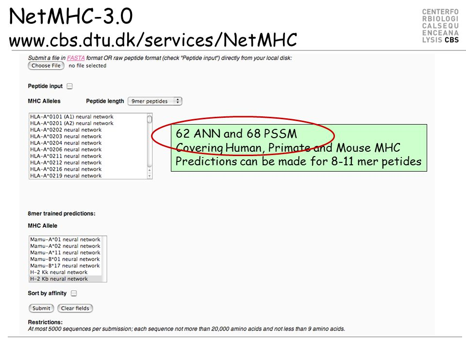NetMHC-3.0 www.cbs.dtu.dk/services/NetMHC 62 ANN and 68 PSSM Covering Human, Primate and Mouse MHC Predictions can be made for 8-11 mer petides
