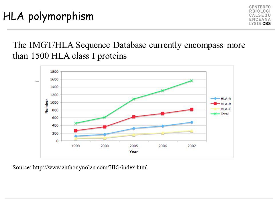 HLA-DR specificity clustering DRB1*1421 DRB1*1103 DRB1*1202