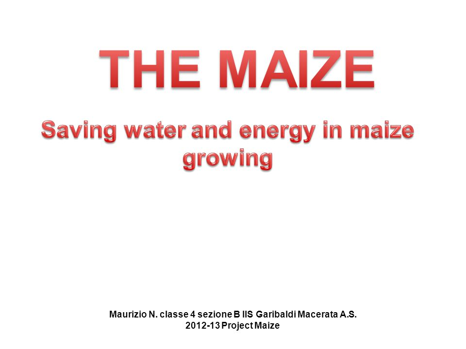MAP Maize General features Irrigation methods Surface Irrigation Photo gallery Driving question Maize for new energy Energy & maize Drip irrigation Sprinkler irrigation Maurizio N.