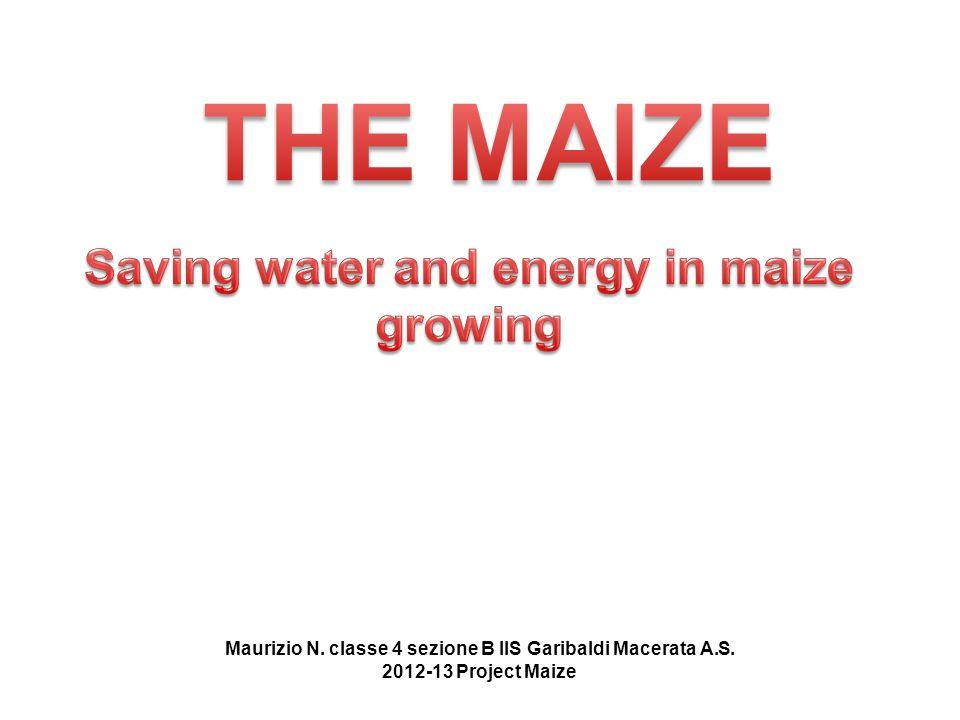Maurizio N. classe 4 sezione B IIS Garibaldi Macerata A.S. 2012-13 Project Maize