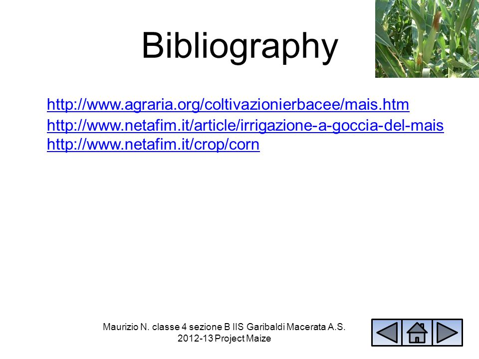Bibliography http://www.agraria.org/coltivazionierbacee/mais.htm http://www.netafim.it/article/irrigazione-a-goccia-del-mais http://www.netafim.it/cro