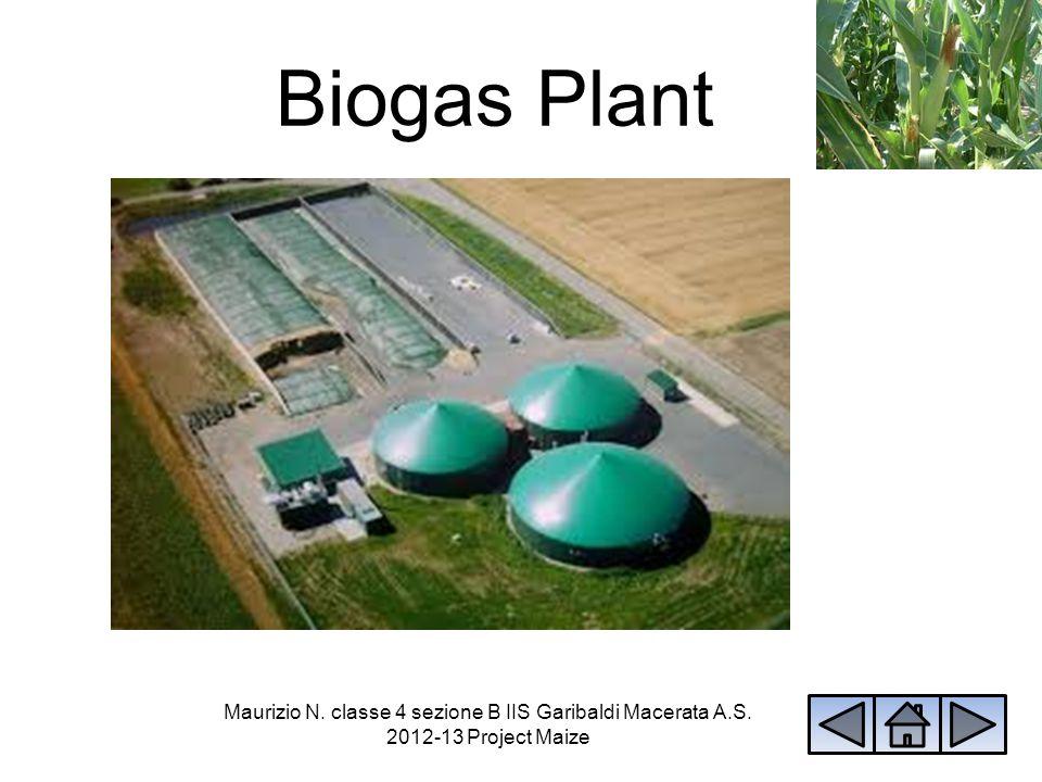 Biogas Plant Maurizio N. classe 4 sezione B IIS Garibaldi Macerata A.S. 2012-13 Project Maize