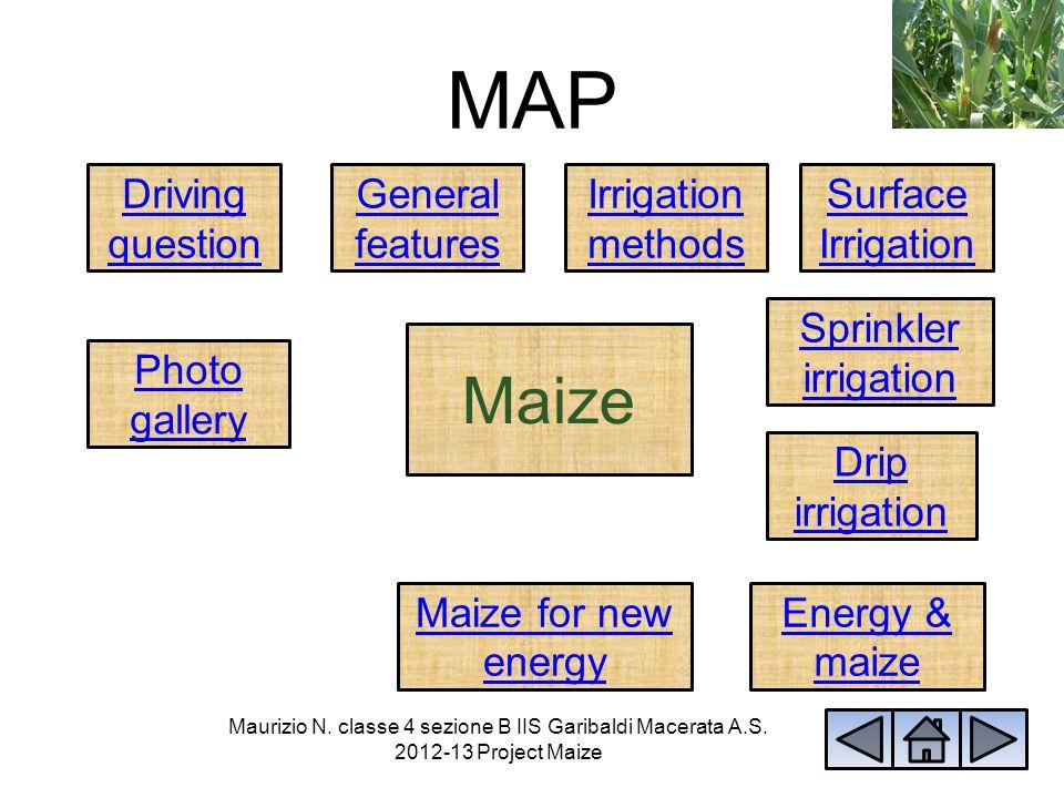 Photo gallery Maurizio N. classe 4 sezione B IIS Garibaldi Macerata A.S. 2012-13 Project Maize