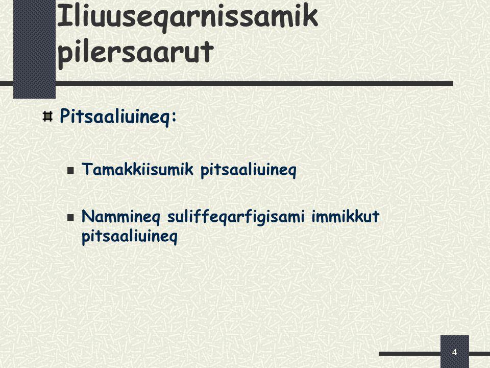4 Iliuuseqarnissamik pilersaarut Pitsaaliuineq: Tamakkiisumik pitsaaliuineq Nammineq suliffeqarfigisami immikkut pitsaaliuineq