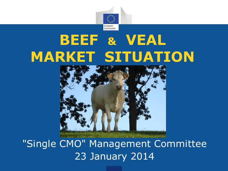 BEEF & VEAL MARKET SITUATION Single CMO Management Committee 23 January 2014
